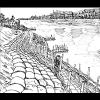 Comment construire une digue biologique