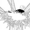 Animales en la Biblia - El águila