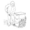 Cómo trabajar con abejas