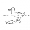 [EE] How to Care for Fish and Ducks